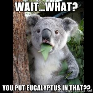 KoalaMeme